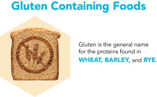 Gluten containing Foods
