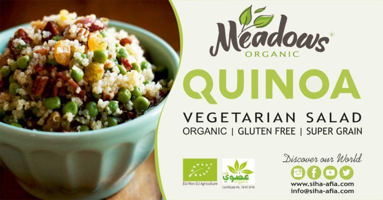 Organic Vegetarian Quinoa Salad