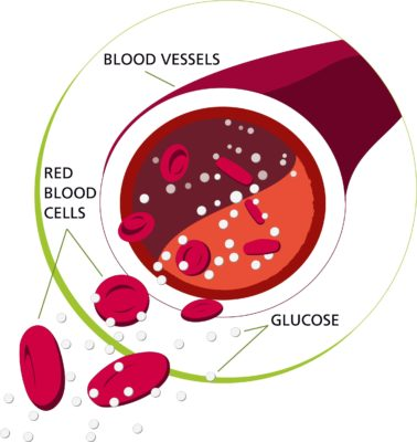 what is glucose